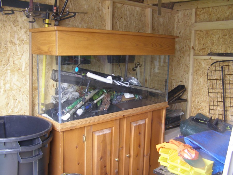 50 gallon fish tank pueblo pueblo free stuff items for 50 gallon fish tank