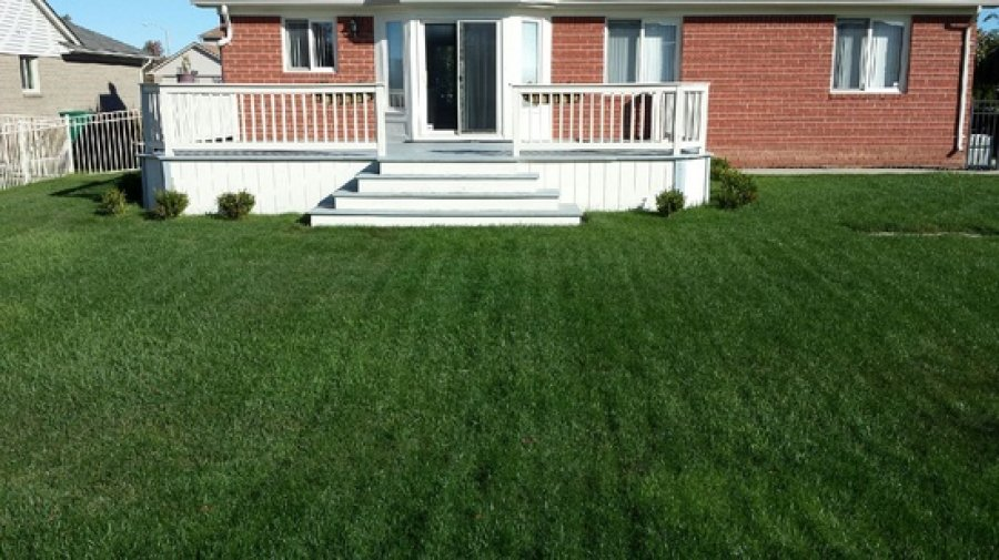 194 500 3br beautiful ranch macomb for sale by