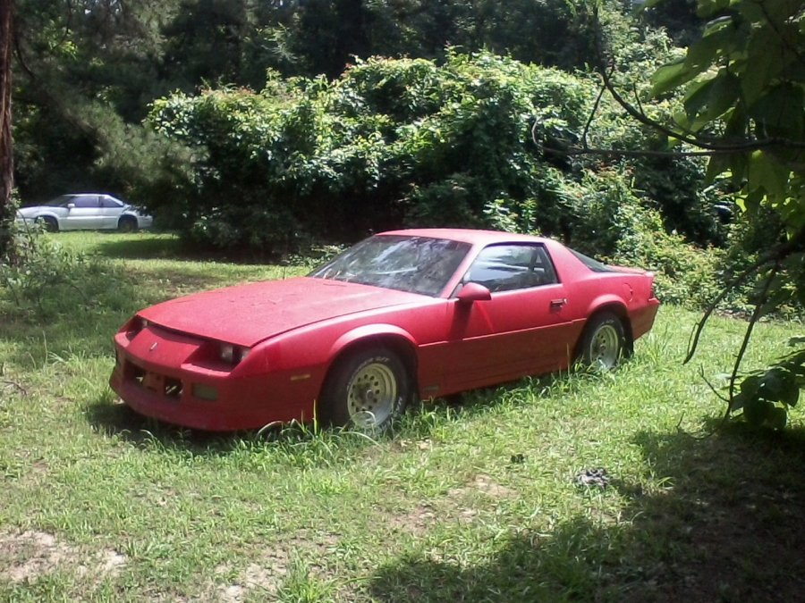 1988 chevy camaro for sale picture. Black Bedroom Furniture Sets. Home Design Ideas