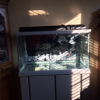 50 gallon fish tank with stand (oceanic) offer Pet Supplies