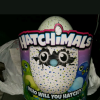 Toys/Hatchimal offer Kid Stuff