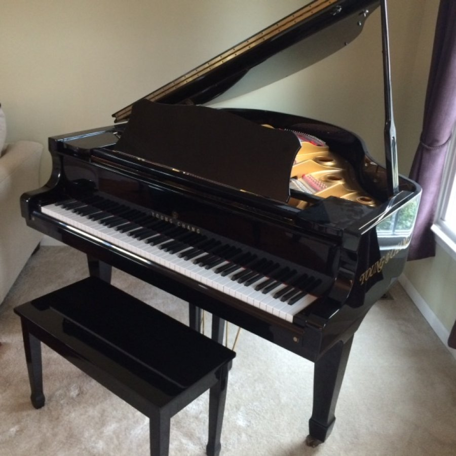 young chang g150 baby grand piano allentown 18069 home. Black Bedroom Furniture Sets. Home Design Ideas