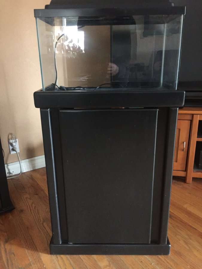 10 gallon fish tank with stand, filter, and rocks | Simi ... 10 Gallon Fish Tank Stand