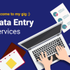 I will be your virtual assistant for copy paste data entry offer Web Services